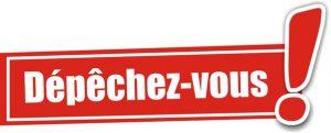VIDE GRENIER 2018 : DÉPÊCHEZ-VOUS !!!! PLUS QUE 235 EMPLACEMENTS…..